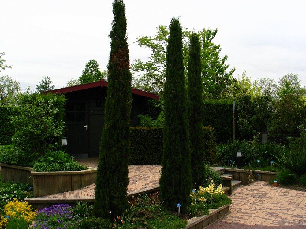 Cipreses en jardines pgina 6 foro de infojardn for Infos jardin